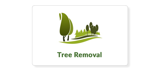 tree removal icon